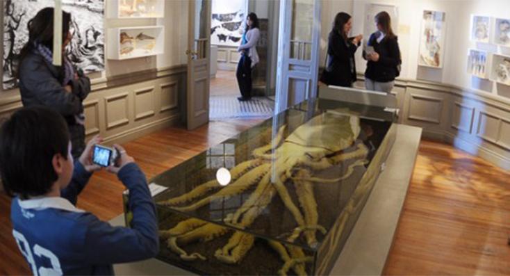 Fotos de algunos de los museos de nuestra provincia en su semana